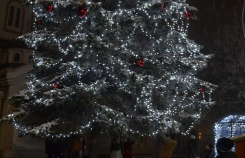 Светлините на коледната елха грейнаха в Елин Пелин